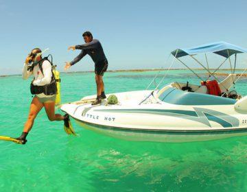 Vida marinha e natureza preservada são diferenciais de Maragogi