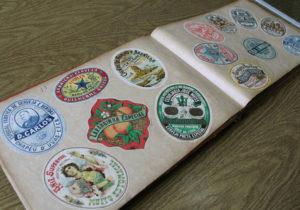 Estudos realizados no Museu destacam produção litográfica de Pietro Biancovilli