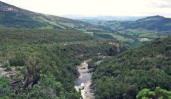 """""""Dia da Água"""" e """"Dia Mundial Florestal"""" são comemorados em…"""