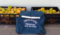 Frutas apreendidas pela fiscalização são doadas para instituições beneficentes