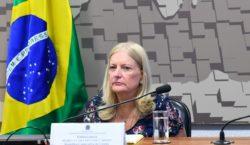 Guiana deve crescer 30% ao ano e Brasil pode se…
