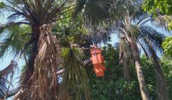 Empav realiza manutenção em mais de dez bairros nesta semana