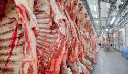 Exportações de carne podem fechar 2019 com resultado recorde