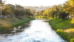 Prefeitura fará serviço para reflorestar margens do Rio Paraibuna