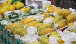 Valor dos alimentos em Juiz de Fora cresce mais de…