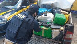 Polícia Rodoviária apreende cerca de 350 Kg de maconha na…