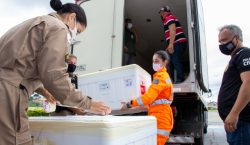 Minas Gerais recebe 357,4 mil doses de vacinas contra covid-19…