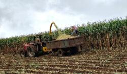 Inscrições para suporte no preparo de solo e plantio terminam…