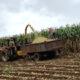 Inscrições para suporte no preparo de solo e plantio terminam nesta quinta-feira, dia 29