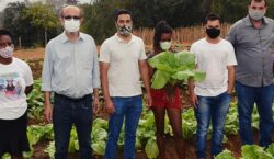 Horta comunitária melhora alimentação e renda de famílias na Zona…