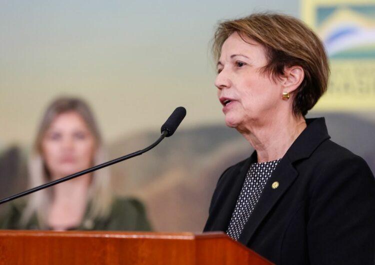 Plano ABC+ pretende reduzir emissão de carbono em 1,1 bi de toneladas