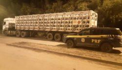 PRF apreende caminhão contendo 996 botijões de gás ilegais