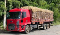 PRF multa caminhão com quase 10 toneladas acima de excesso…